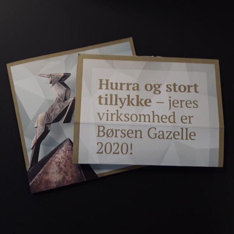 NIC Denmark Gazelle 2020